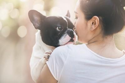 飼い主に抱かれる犬