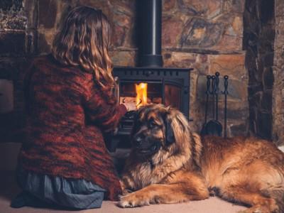暖炉の前でくつろぐ犬と人