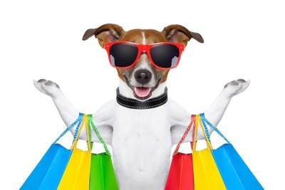 買い物を楽しむ犬