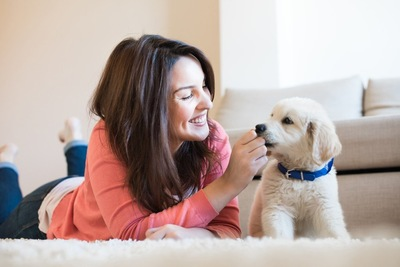 女性が犬と腹ばいになって微笑む