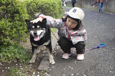 しゃがんで犬を撫でる子供
