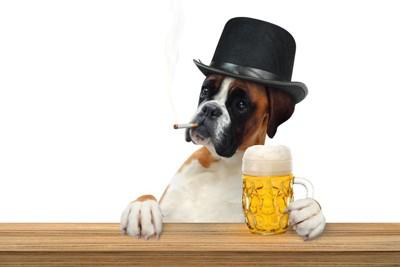 ビールを持った犬