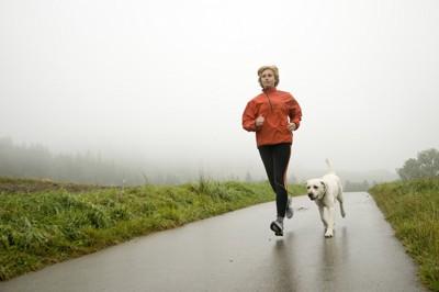 犬とジョギングする女性