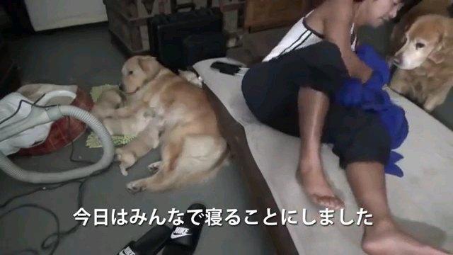 今日は~字幕