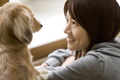 女性を顔を見合わせる犬