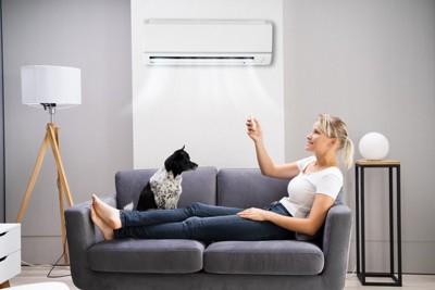 エアコンを操作する女性と座る犬