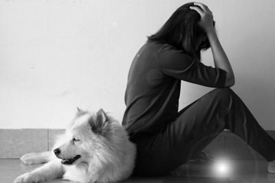 頭を抱える女性の背後に座る犬