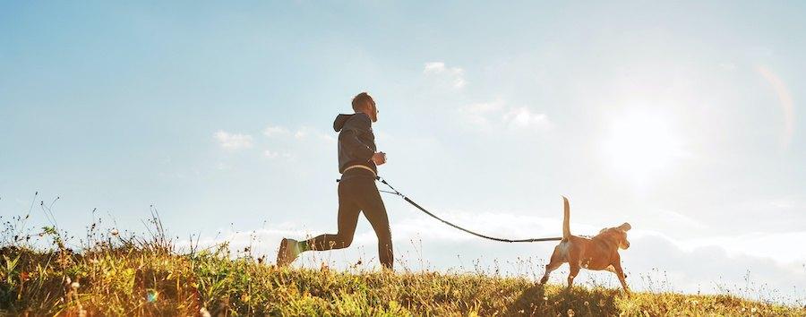 犬と一緒に走る男性