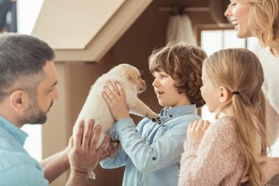 ラブラドールの子犬と家族