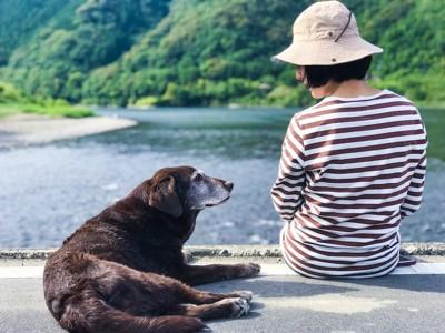 散歩の休憩中に見つめ合う飼い主さんと老犬