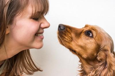 女性と向き合う犬