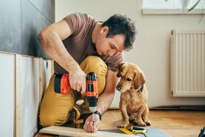 工具を持つ男性、手元を見つめる犬
