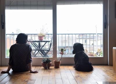 人と犬の後ろ姿
