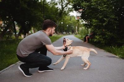 吠える犬を抑えようとする男性