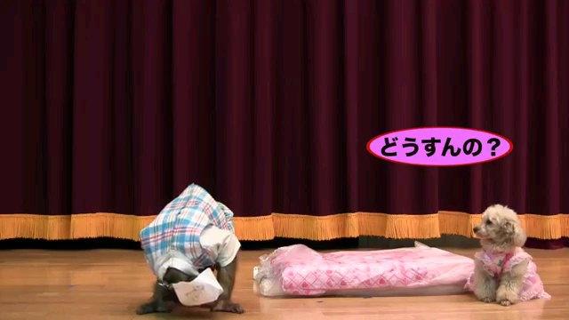 どうすんの?~字幕