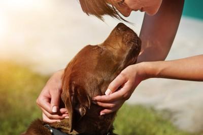 キスしようとする茶色い犬
