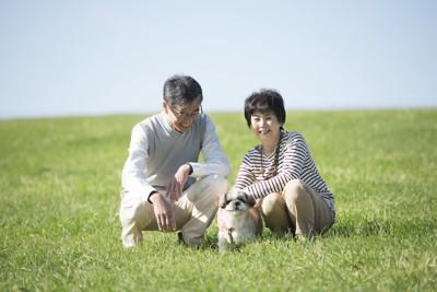 芝生で犬を可愛がっている夫婦
