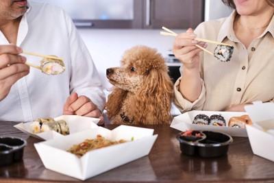 テーブルで食事をする男女とプードル