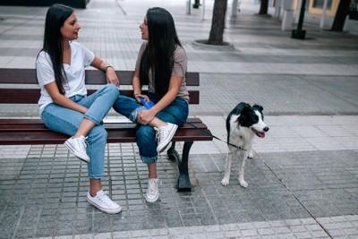 ベンチで話し込む二人の女性と待っている犬