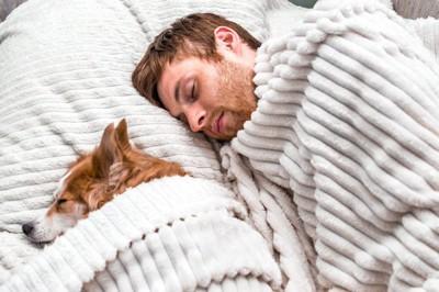 ベッドで並んで眠る犬と男性