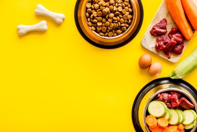 黄色い背景 ドッグフードと野菜肉