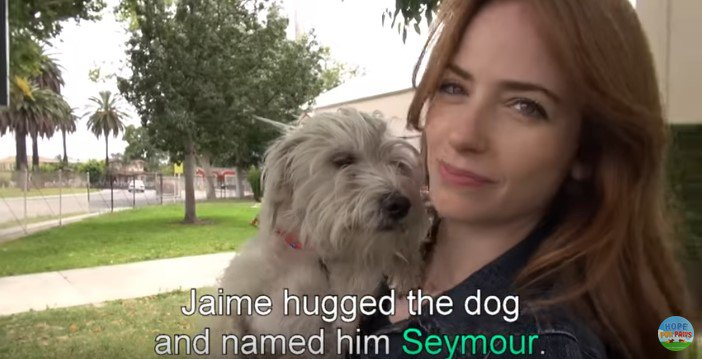 犬を抱える