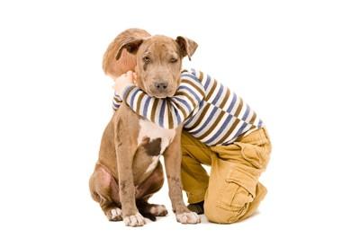 少年に抱きしめられる犬
