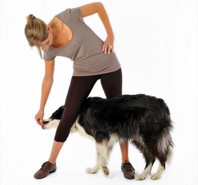 犬が飼い主の足の間をくぐっている