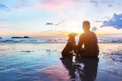 海辺で夕陽をみる人と犬