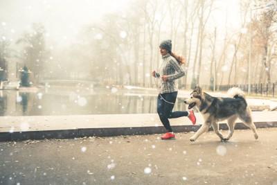 ランニングする犬と女性