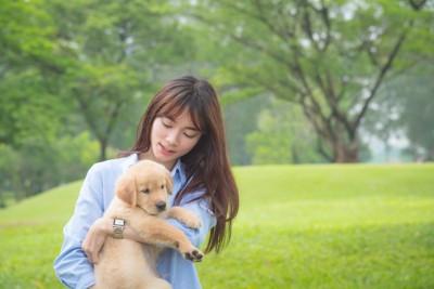 ラブラドールの子犬を抱いている女性