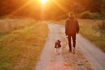 人と犬散歩