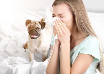 くしゃみをする女性と犬