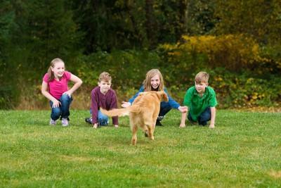 子ども4人と走る犬