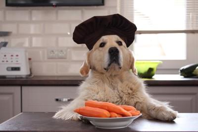 にんじんとシェフ帽子をかぶった犬