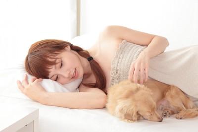 寝ている犬を触る女性