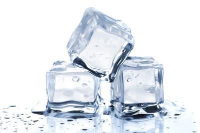 犬が氷を食べる時に注意したいこ...