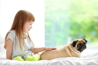 犬を撫でる子ども