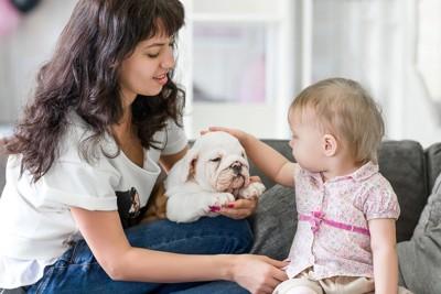 お母さんと犬と赤ちゃん
