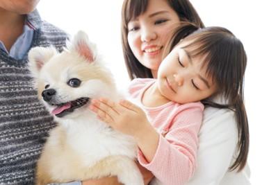 幼い女の子に触られている犬