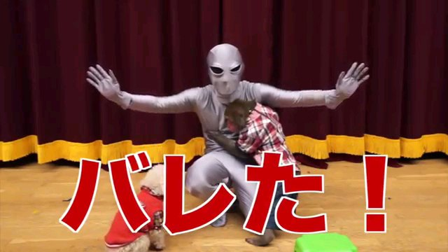 バレた!~字幕
