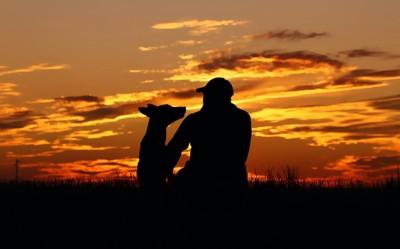 夕日を背景に座っている飼い主と犬