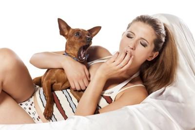 一緒にあくびをする犬と女性