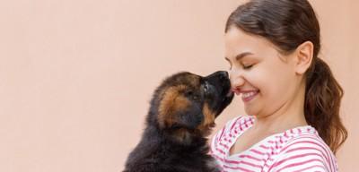 女性の鼻を舐める犬