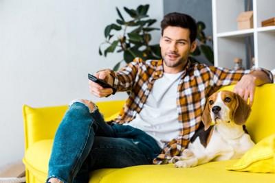 一緒にテレビを観る犬と男性