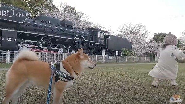 機関車わんこ