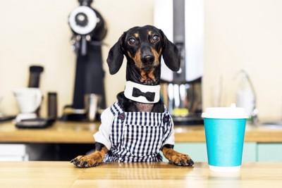 制服を着て接客している犬