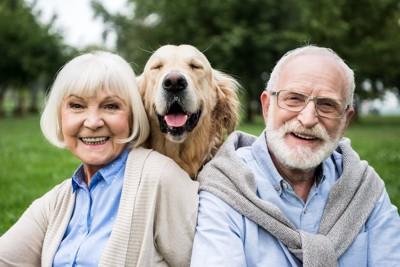 老夫婦とゴールデンレトリバー
