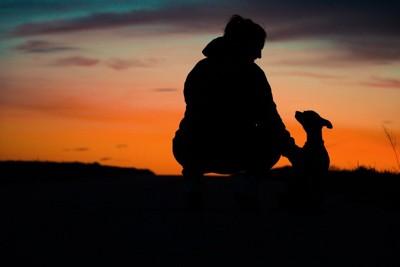 寄り添う人と犬のシルエット