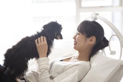 犬を抱き上げている女性